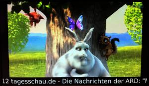 """Ein Foto des Videos """"Big Buck Bunny"""" der Blender Foundation welches PECS in Full-HD Auflösung nach dem Aufruf eines Patienten weiter abspielt - von der MIDAN SOFTWARE GmbH."""