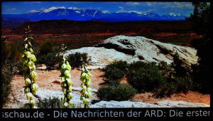 Ein weiteres Foto einer möglichen PECS Diashow inklusive Newsticker - von der MIDAN SOFTWARE GmbH.